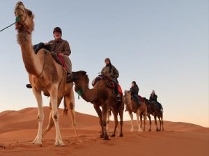 https://travelinsidemorocco.com/3-days-desert-tour-from-fes-to-marrakech/